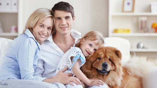 Wills & Trusts dog-young-family Direct Wills Biggleswade